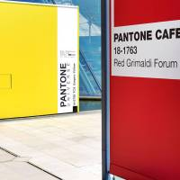 PANTONE CAFÉ